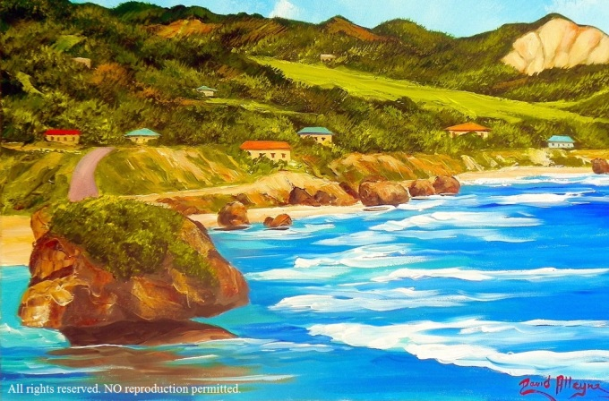 """Beautiful Barbados East Coast"" by David Alleyne"