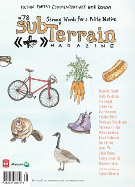 subTerrain Issue #78 Cover